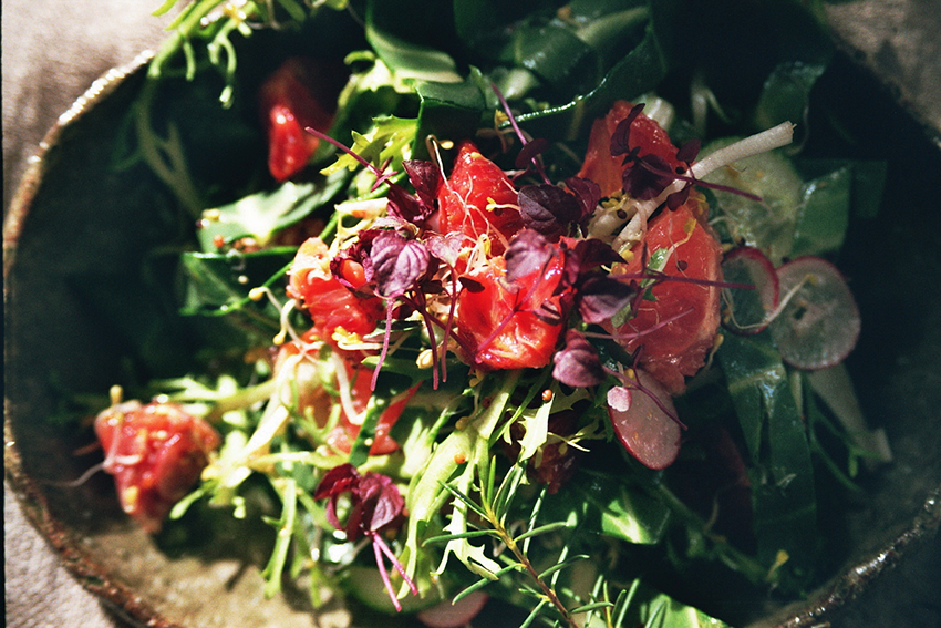 Blood orange & Swiss chard salad