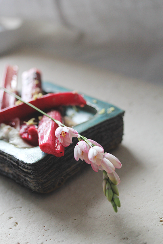 Labneh with rhubarb and liquorice